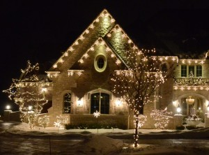 LED Snowflake Light Link - Warm White