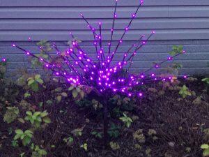 Decorate landscape with LED Lightburst - Purple or Orange